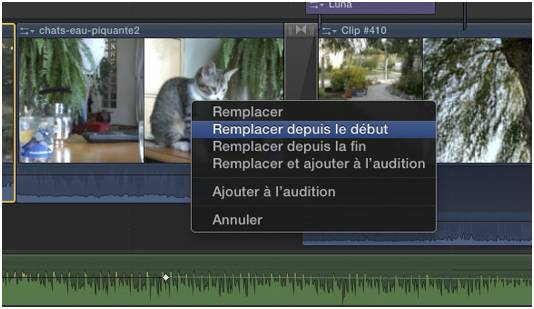 FCPX remplace