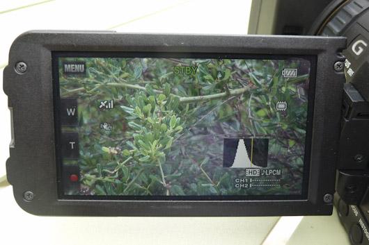 HXR-NX70 écran