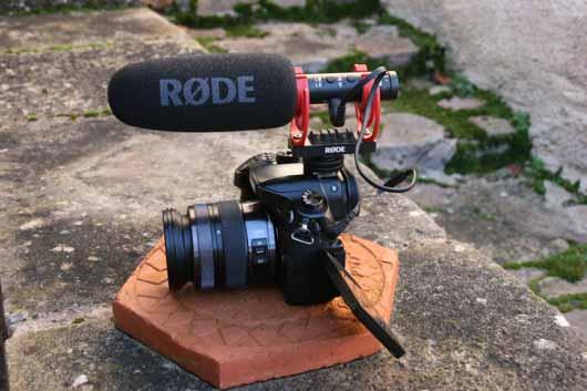 micro Rode Videomic NTG