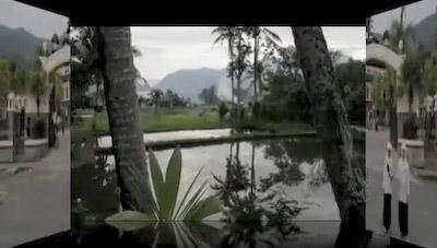 video307.jpg